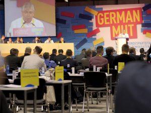 Rudi Rentschler beim 66. FDP Bundesparteitag